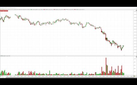 Rt investor and trade navigator platforms